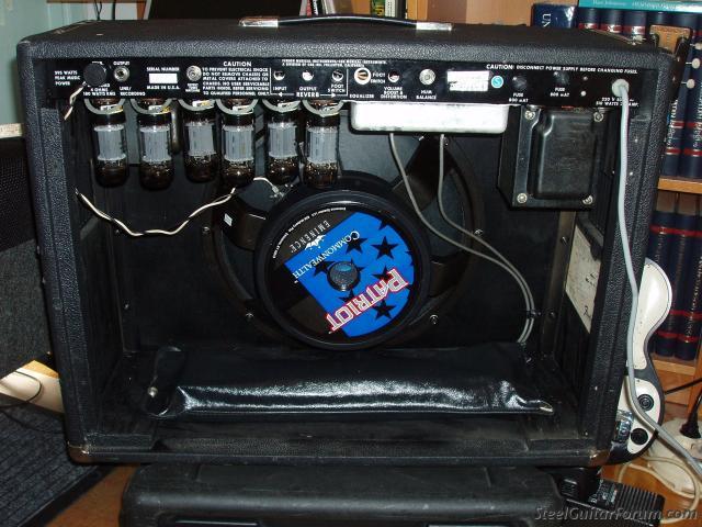 Gallerie Amplis Fender & Clones 4361_P4070013_1