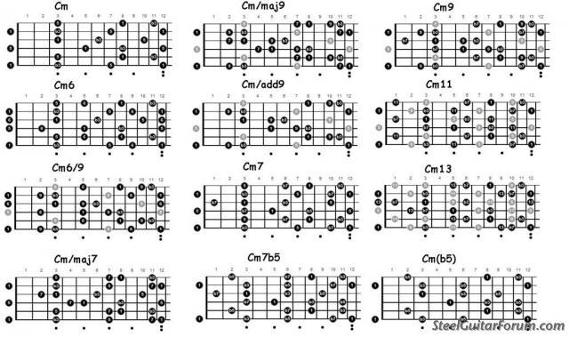 Steel Guitar Map pour 6 & 8 cordes 8903_C2_Large_1