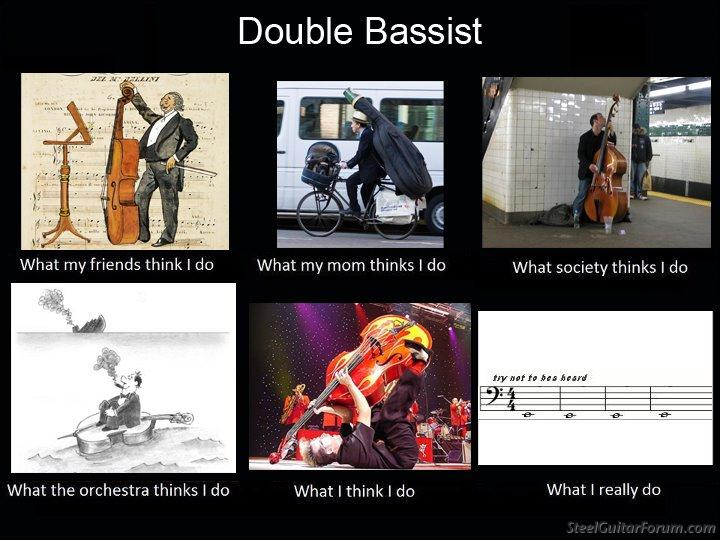 j'en ai marre ! - Page 3 2543_double_bassist_1