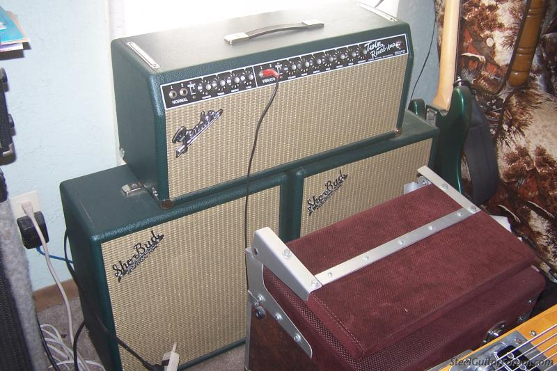 The Steel Guitar Forum :: View topic - Fender Twin Reverb to Head only