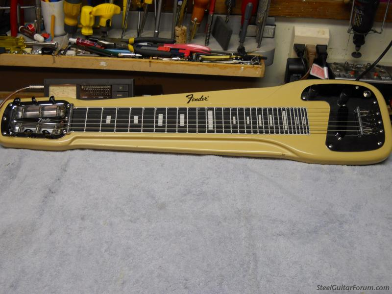 Fender lap steel serial numbers dating