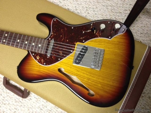 Telecaster Thinline by Warmoth (sold off forum) : The Steel